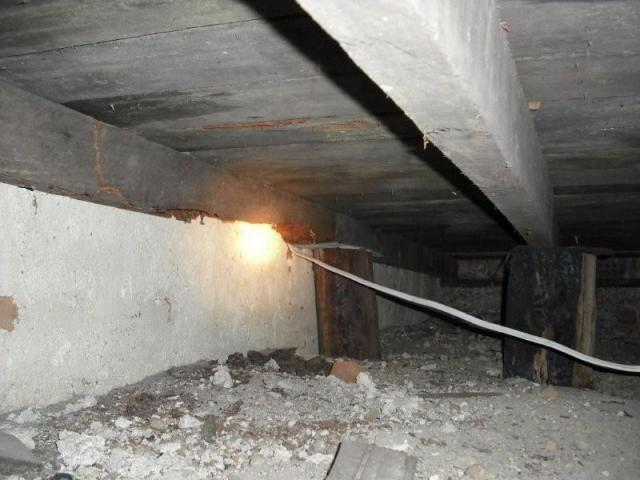 Forrestfield building inspection - Termite Damage